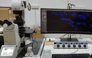 Slot Booking for Leica Confocal Microscope
