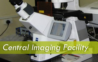 Slot Booking for Confocal (CLSM 710) Microscope